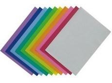 齐心A1725欢颜二页文件套  L形单片资料夹 10个装