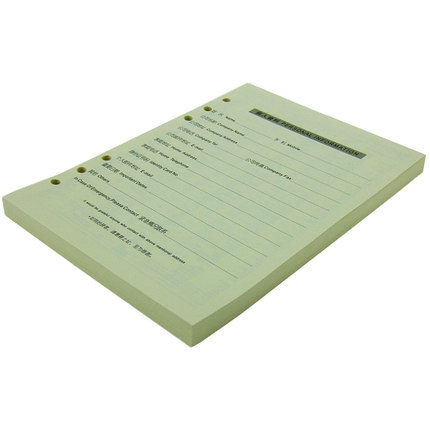 活页笔记本替芯6孔A5100张